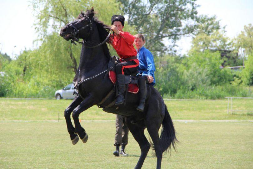 Конный переход казаков Терского войска завершился в станице Курской