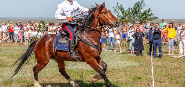 Проект «Маршруты казачьего Ставрополья» будет представлен на всероссийской выставке «Дорогами казаков» в Железноводске