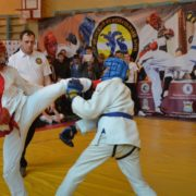В Ставрополе прошли чемпионат и первенство по армейскому рукопашному бою