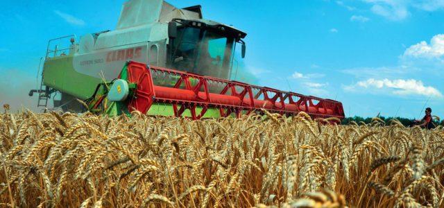Аграрным казачьим хозяйствам окажут поддержку Минсельхоза