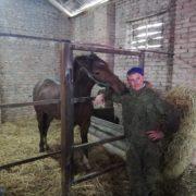 Казаки Курского района продолжают развивать коневодство