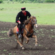 В станице Лысогорской прошёл ежегодный фестиваль традиционной казачьей воинской культуры «Георгиевская Казарла»